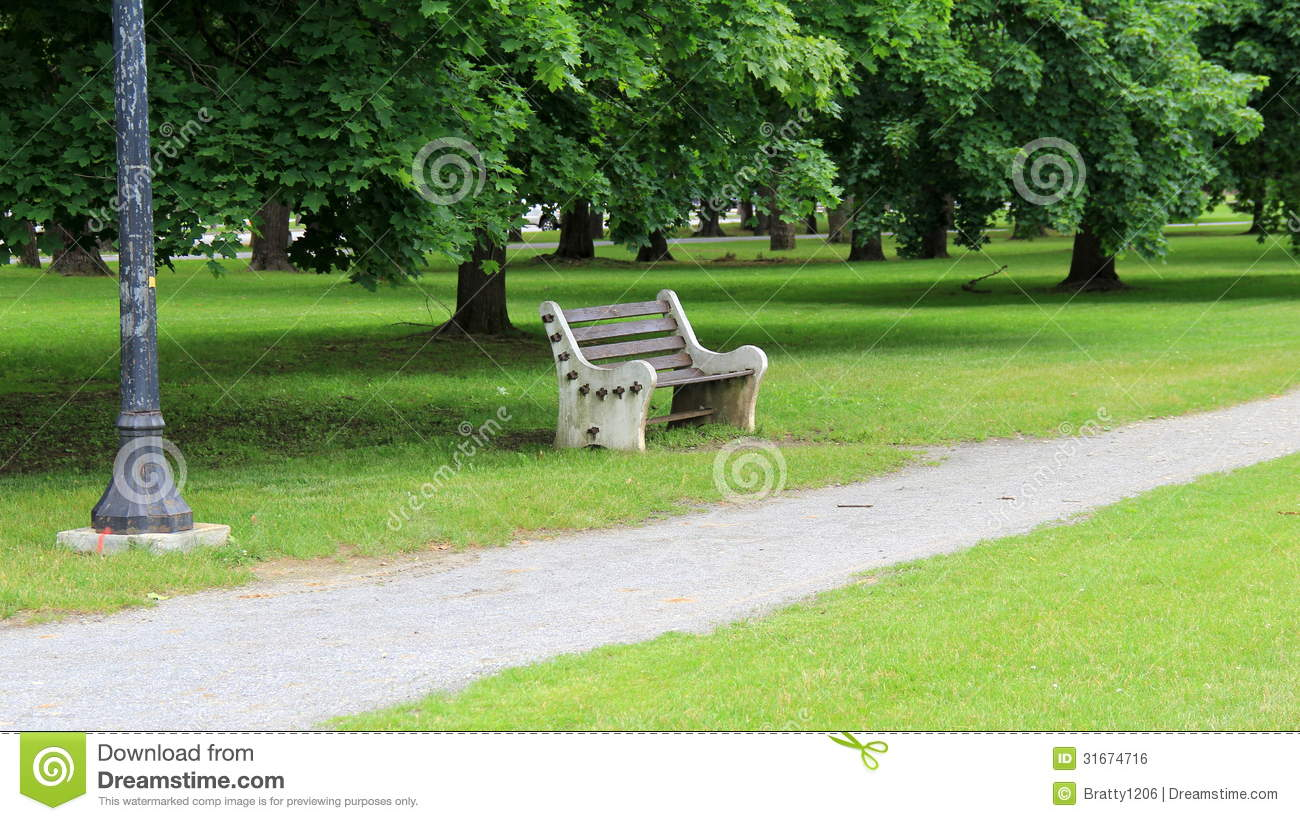 Empty Park Bench Under Shady Trees Stock Photo Image