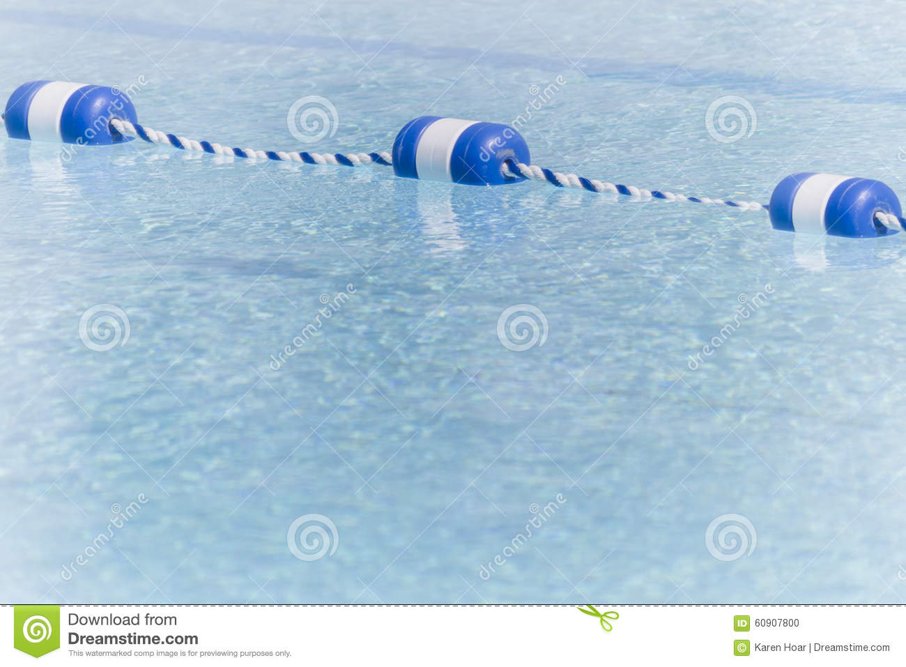 empty pool with lane markers stock photo image 60907800