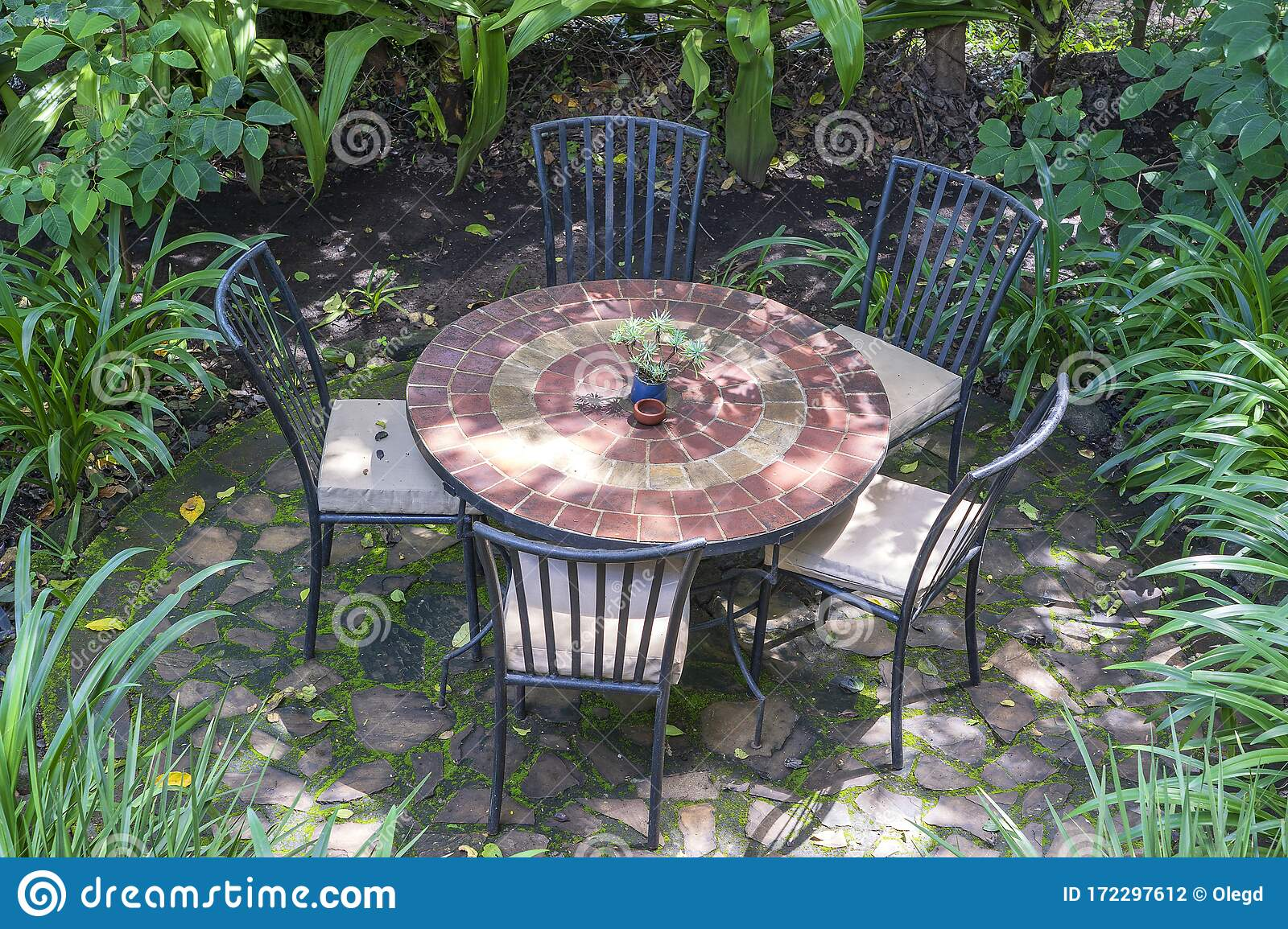 Empty Restaurant Terrace In Tropical Garden With Tables And Chairs Tanzania Africa Stock Photo Image Of Food Home 172297612