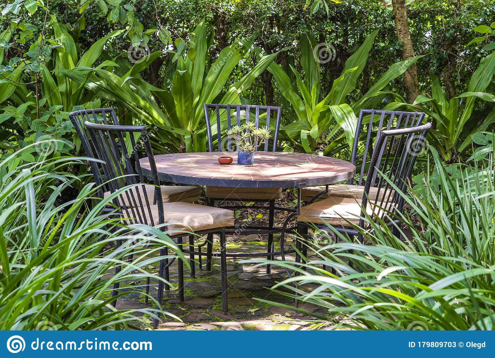 Empty Restaurant Terrace In Tropical Garden With Tables And Chairs Tanzania Africa Stock Image Image Of Rest Elegant 179809703