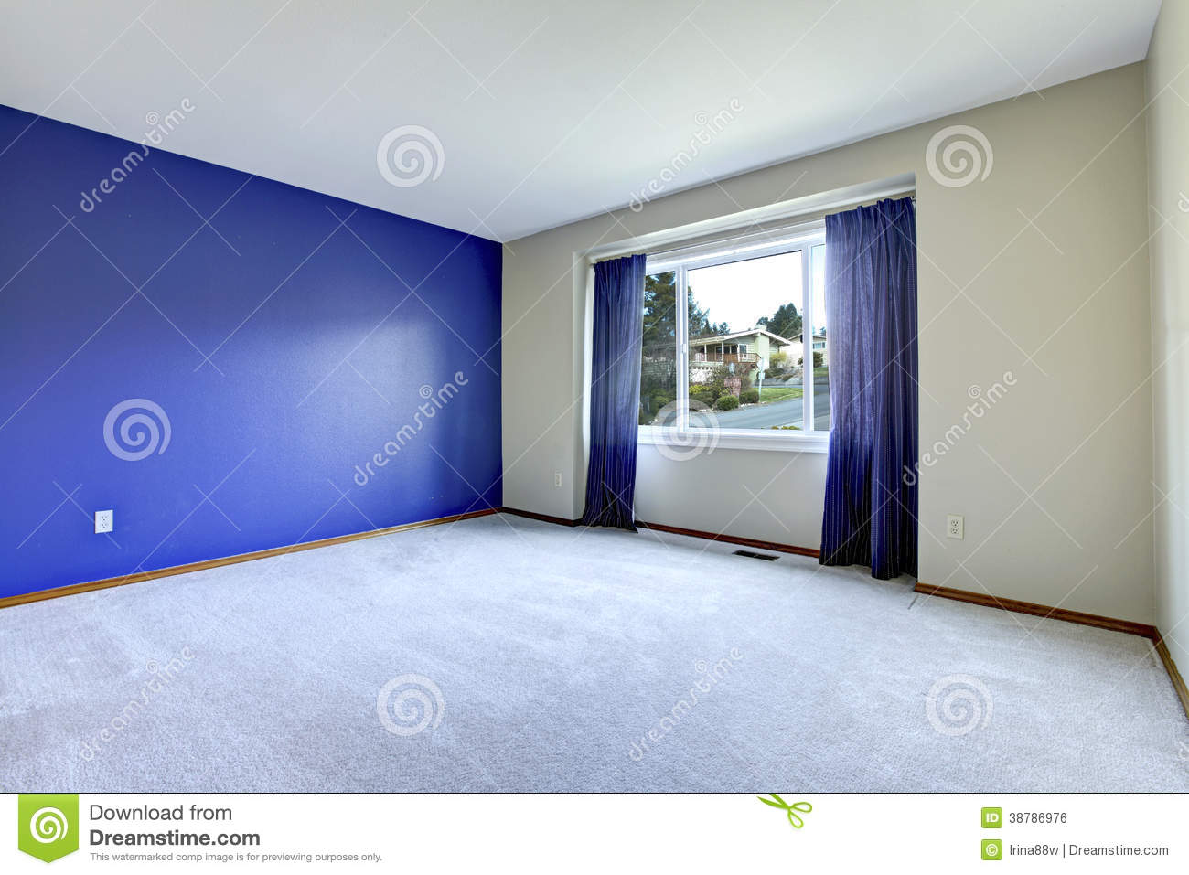 Empty Room With A Conctrast Royal Wall Stock Photo Image