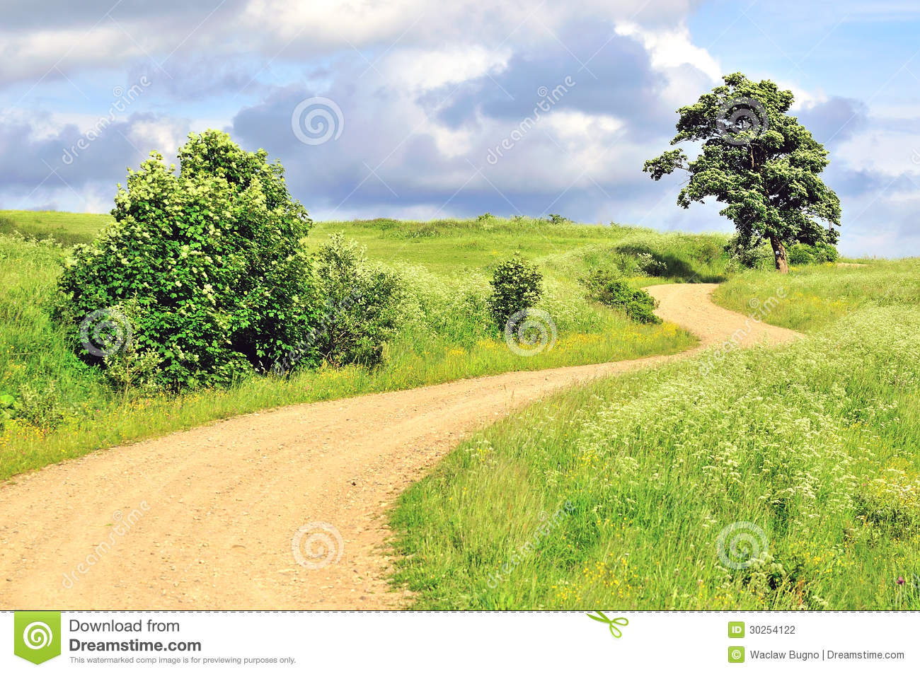 Empty rural landscape beautiful road background stock for Rural landscape design