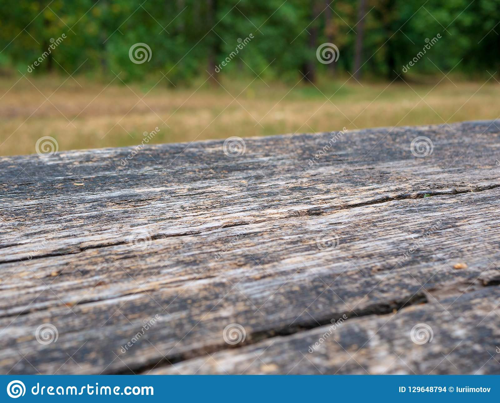 Empty rustic table in front of countryside background. Empty space of green forest. Wood table top in front of of trees in the for