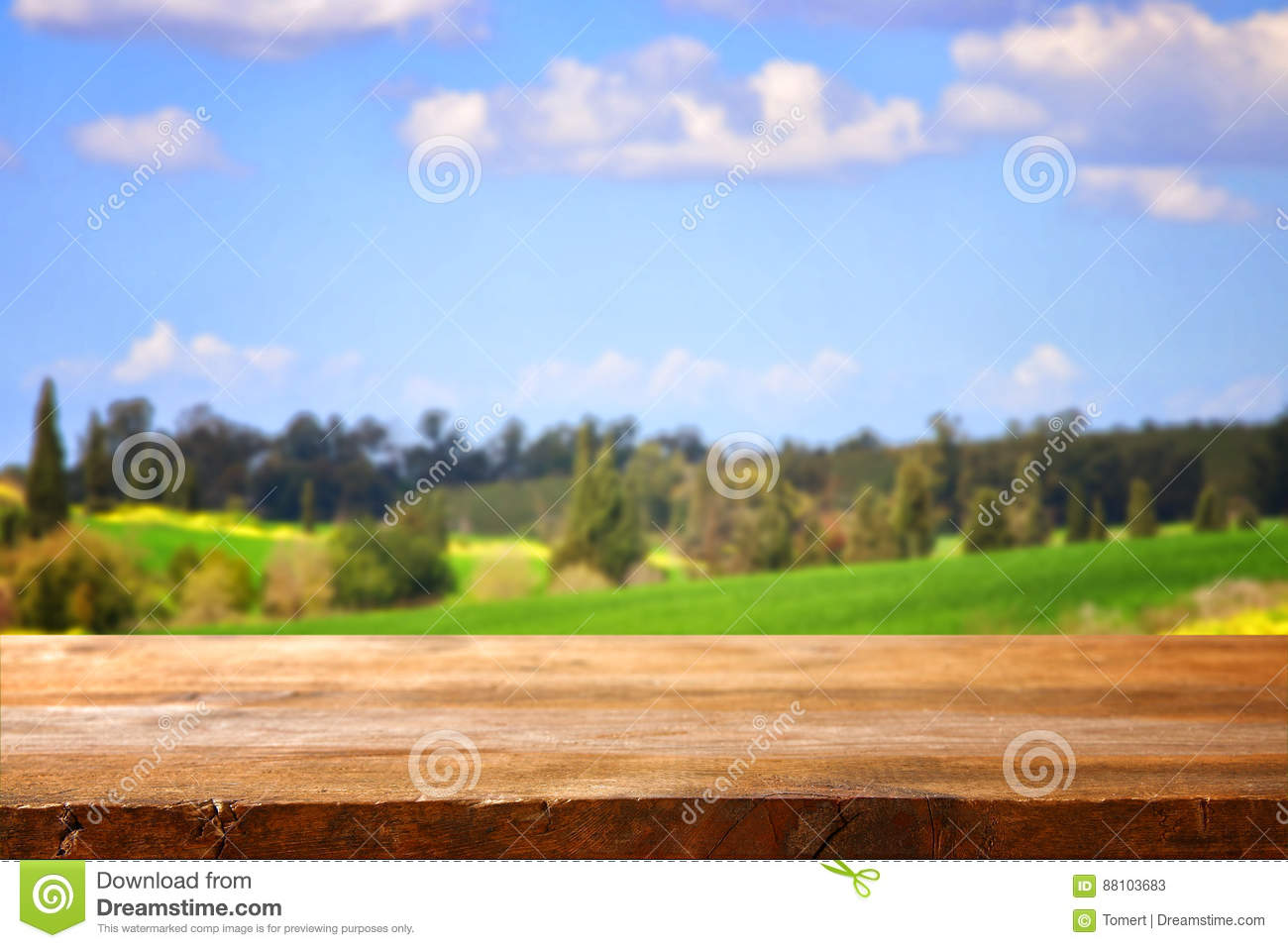 Empty rustic table in front of countryside