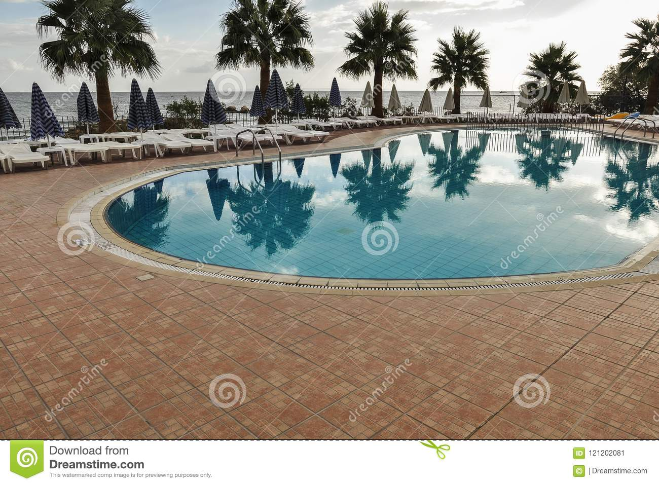 Empty Sunbeds And Swimming Pools With Palms Around. Stock ...