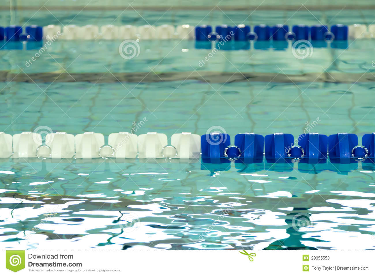 Empty swimming pool with blue and white lane dividers for Empty swimming pool
