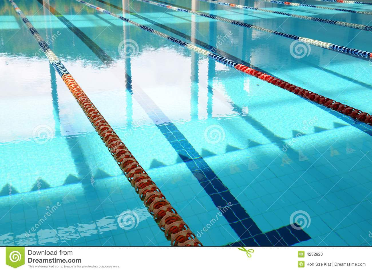 Empty Swimming Pool And Lanes Stock Photo Image 4232820