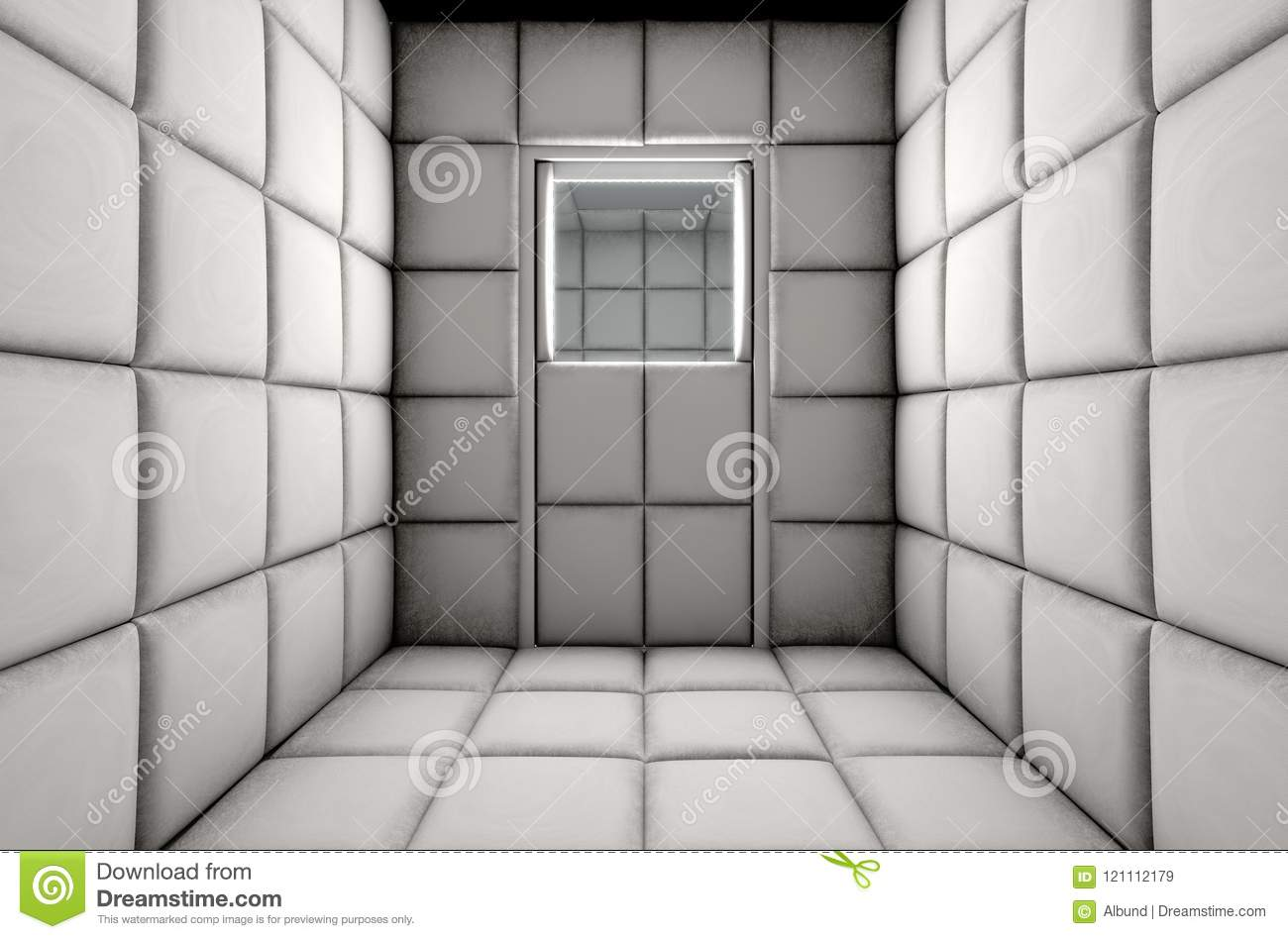 Empty Padded Cell Shut Door