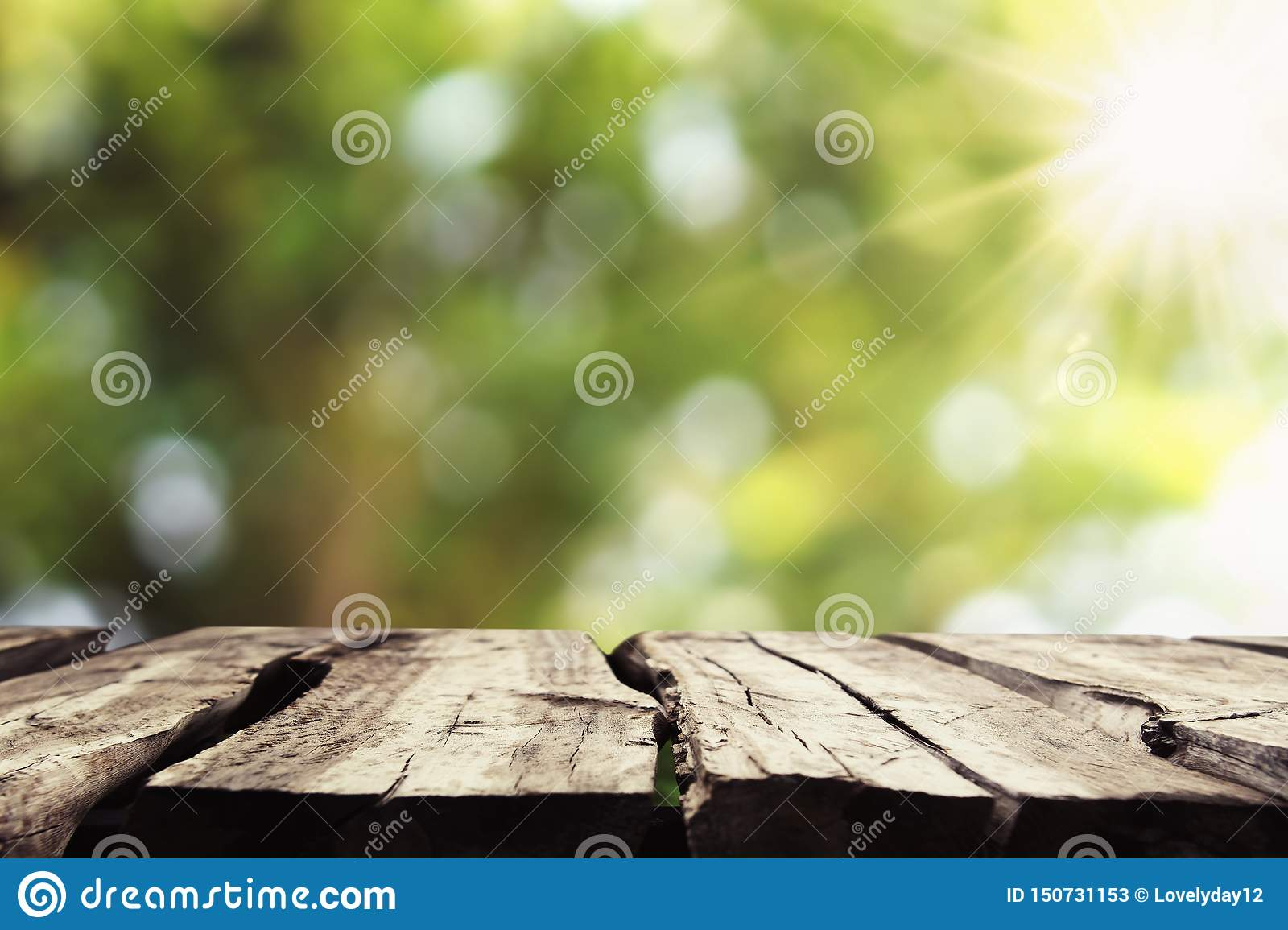 empty wood with blur tree bokeh and sunshine background