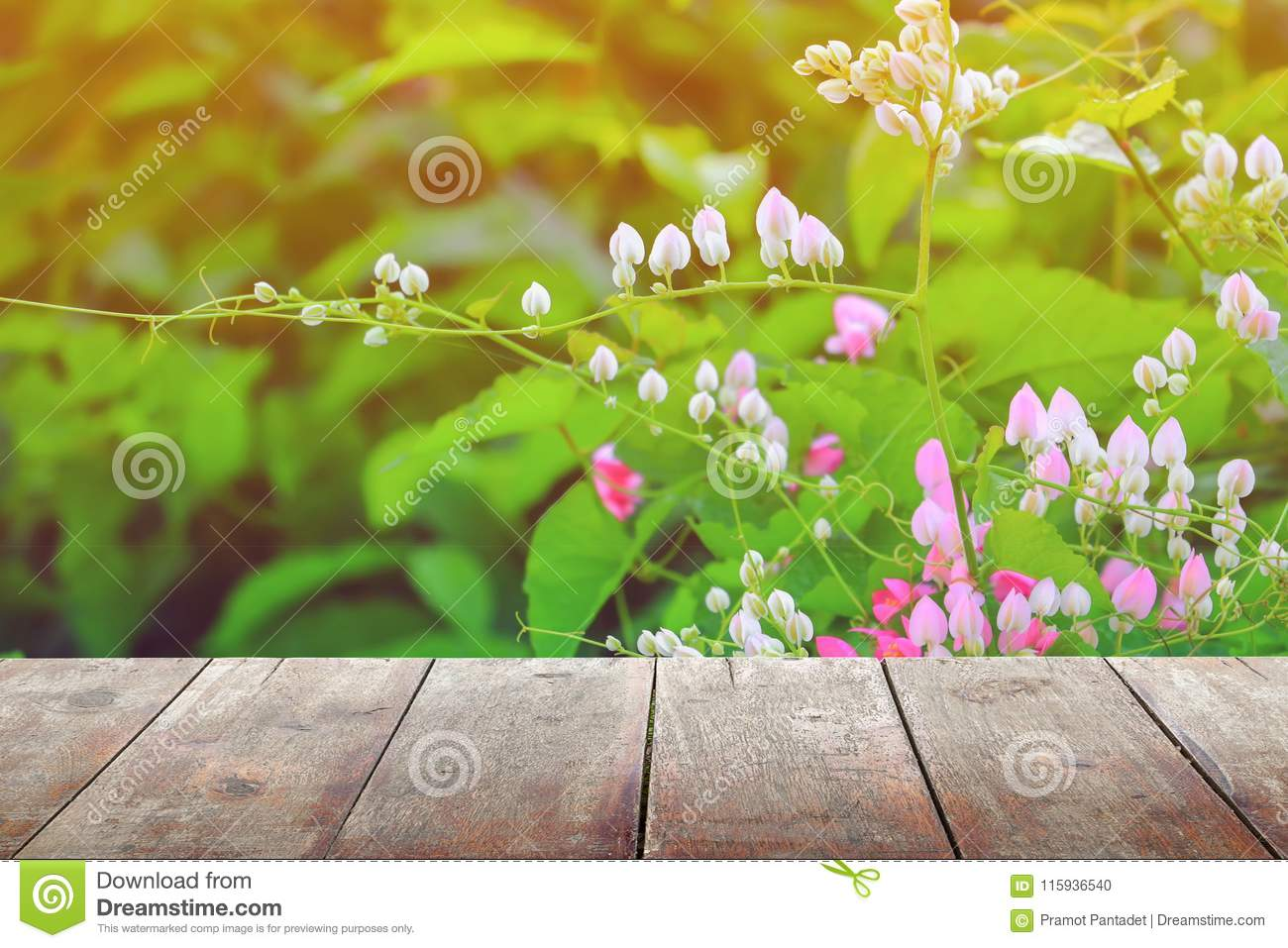 Empty wood texture board floor shelf with flower in nature background with copy space add text