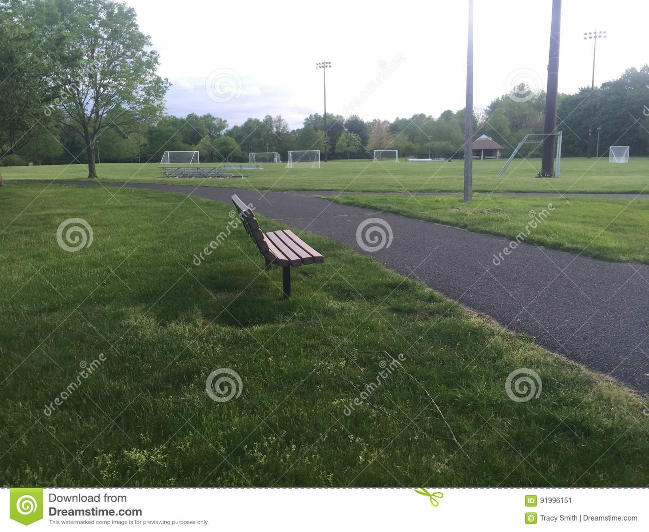 Incredible Empty Wooden Park Bench Surrounded By Green Grass And Machost Co Dining Chair Design Ideas Machostcouk