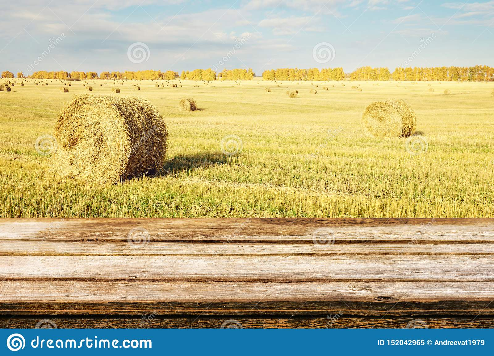 Empty wooden table with autumn landscape of beveled field and straw bales. Mock up for display or montage products