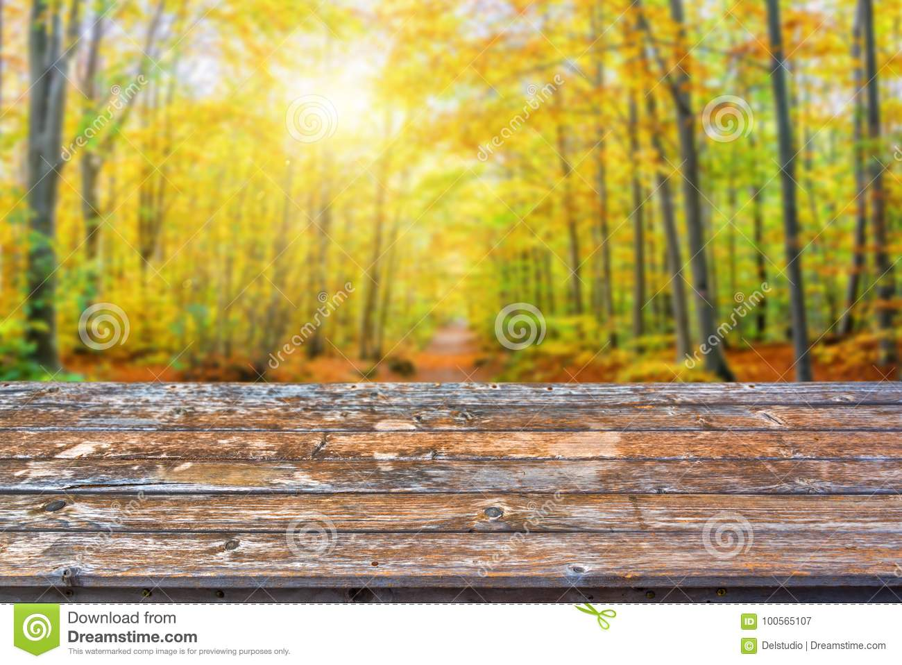 Empty Wooden Table Top, Sunny Forest In Autumn Background, Ready To ...