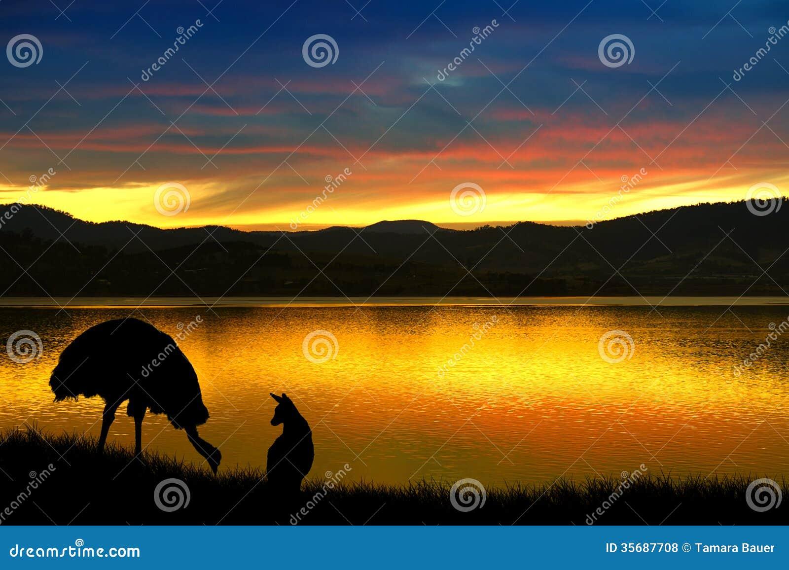 Emu and kangaroo in Australia