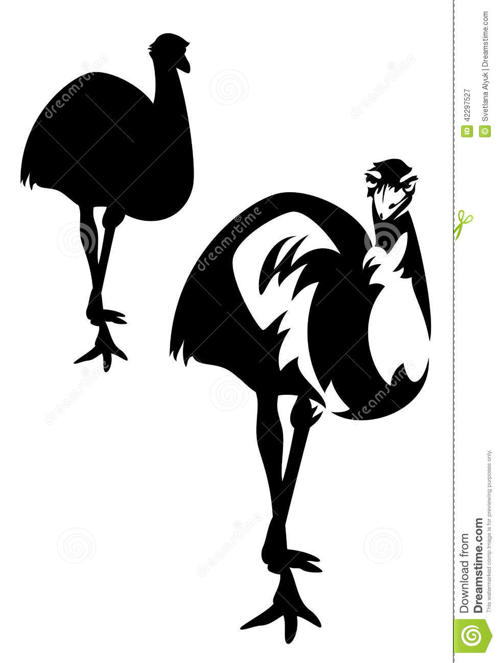 Australian emu ostrich (dromaius novaehollandiae) bird black and white ...