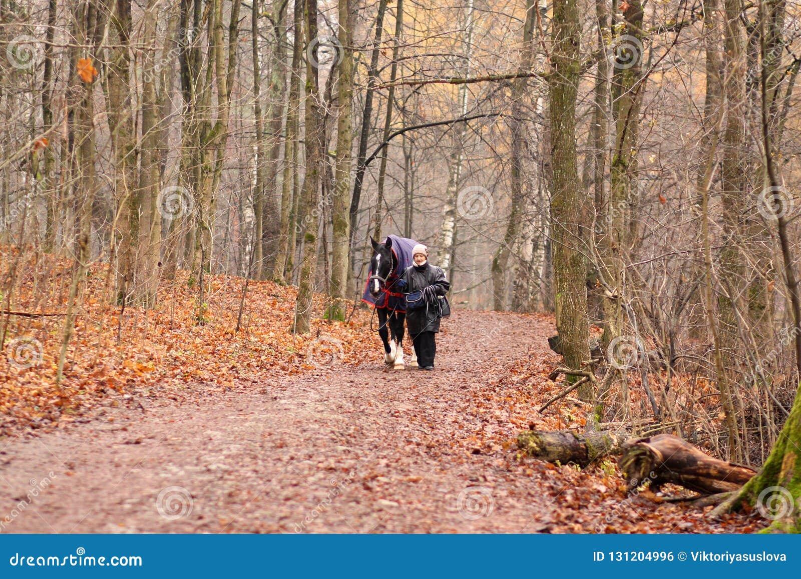 En äldre kvinna och en häst för går i hösten parkerar
