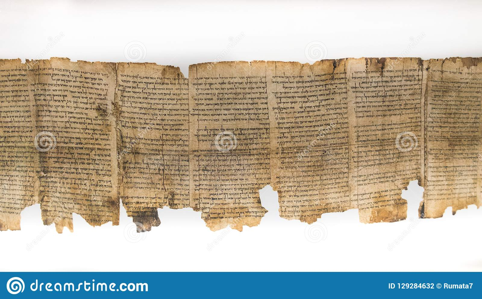 En av snirklar för dött hav, visat i relikskrin av boken israel