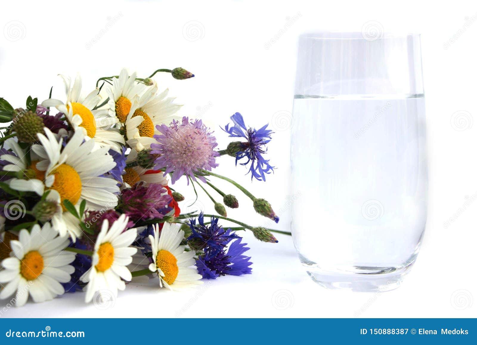 En b-ouquet av vildblommor ligger bredvid ett exponeringsglas av dricksvatten En bukett av tusenskönor, växt av släktet Trifolium