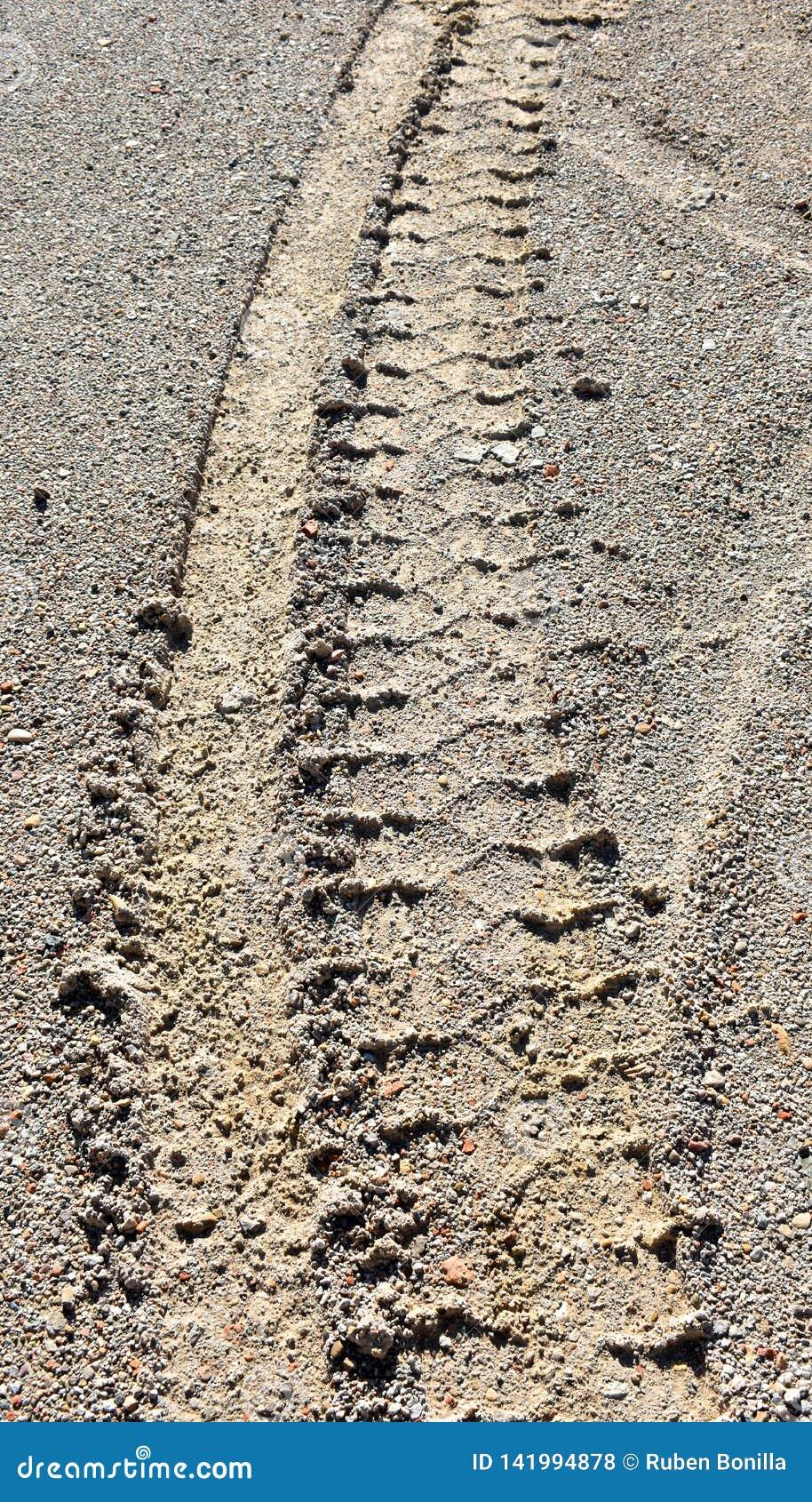 En däckdäckmönster av ett medelhjul på den bruna sanden av vägen Vertikalt foto