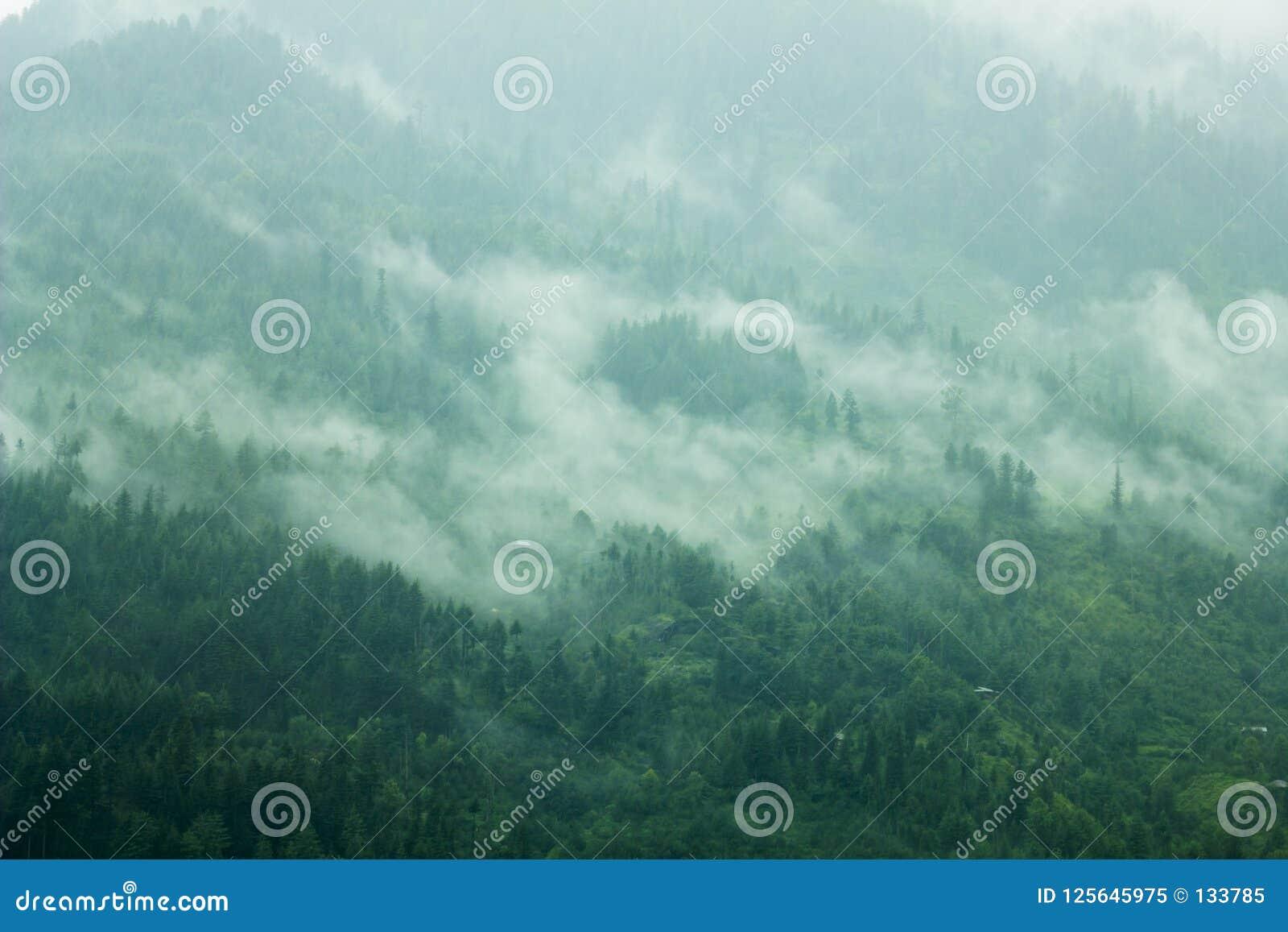 En dimma i de gröna lutningsbergen