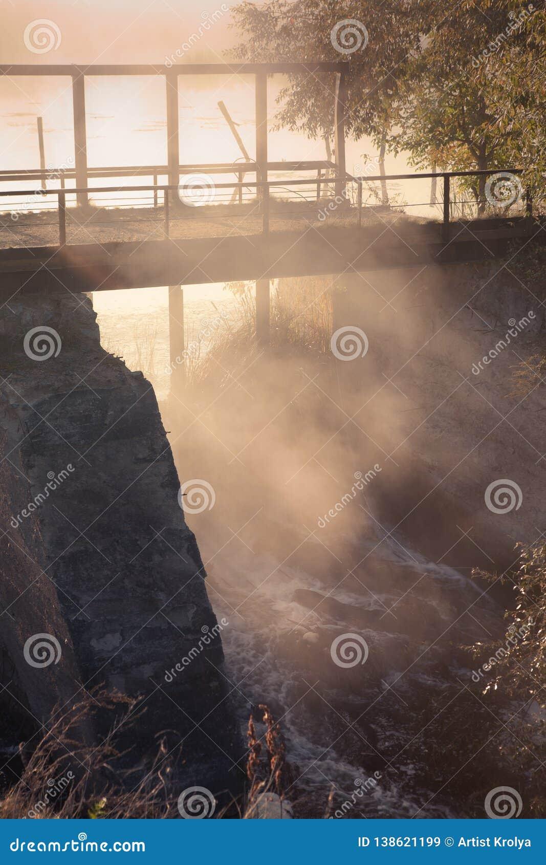 En dimmig morgon vid sjön Kontur av träd med solstrålar