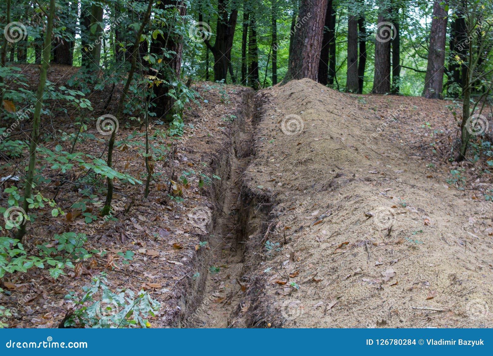 En el otoño se cava el foso, A que el foso largo fue cavado para poner un cable