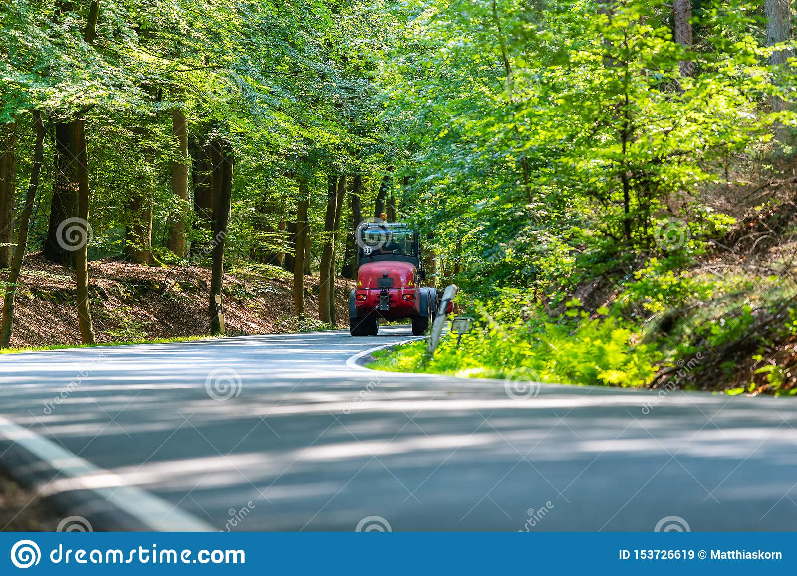 En farlig landsväg i en skog av renen som precis vimlar så i Tyskland