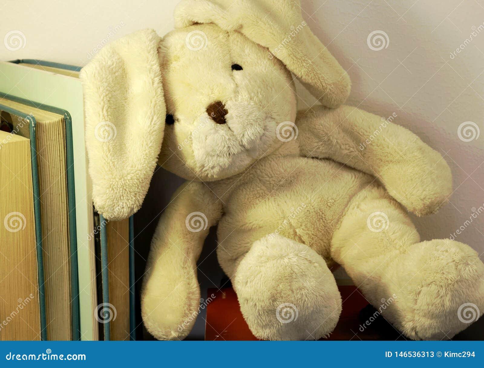 En flott leksak för kanin lutar på en rad av böcker