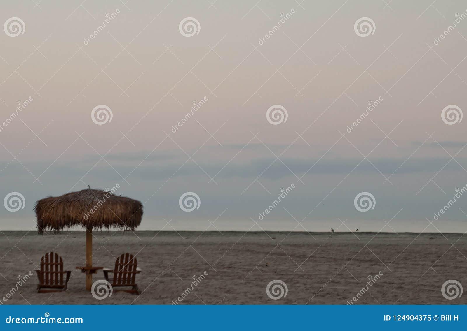 En gömma i handflatanparaplyställning ovanför träadirondackstolar på en Stilla havetstrand