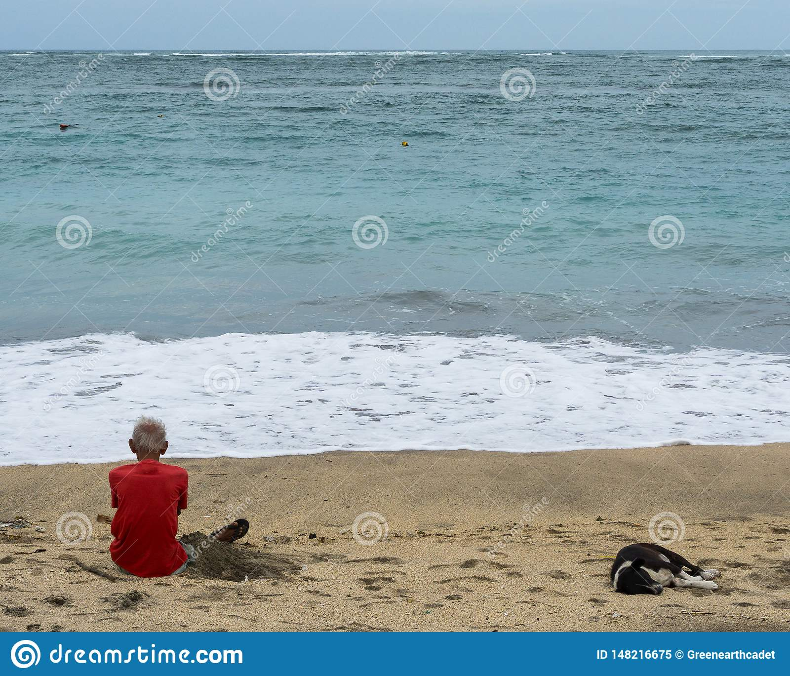 En gamal man som sitter på strandsanden, medan se ut på havet som medföljs av en svartvit hund som sover inte långt från var