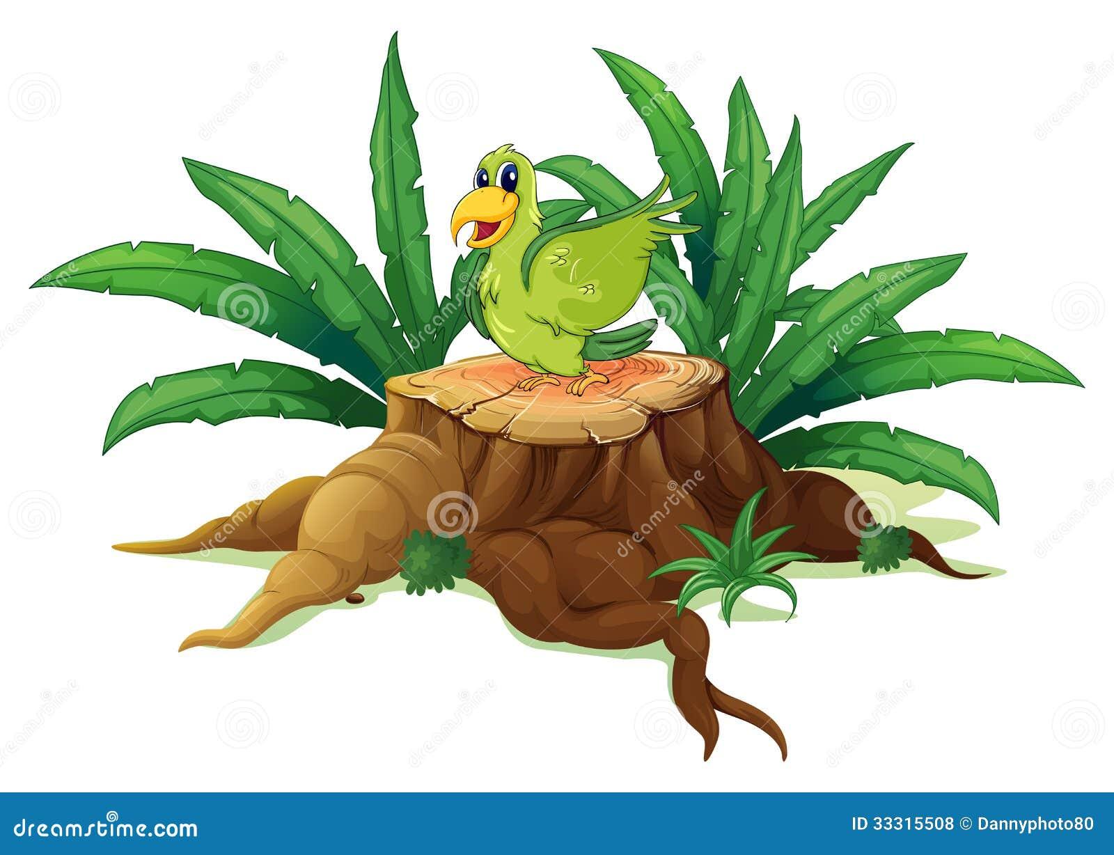 En grön fågel ovanför en stam
