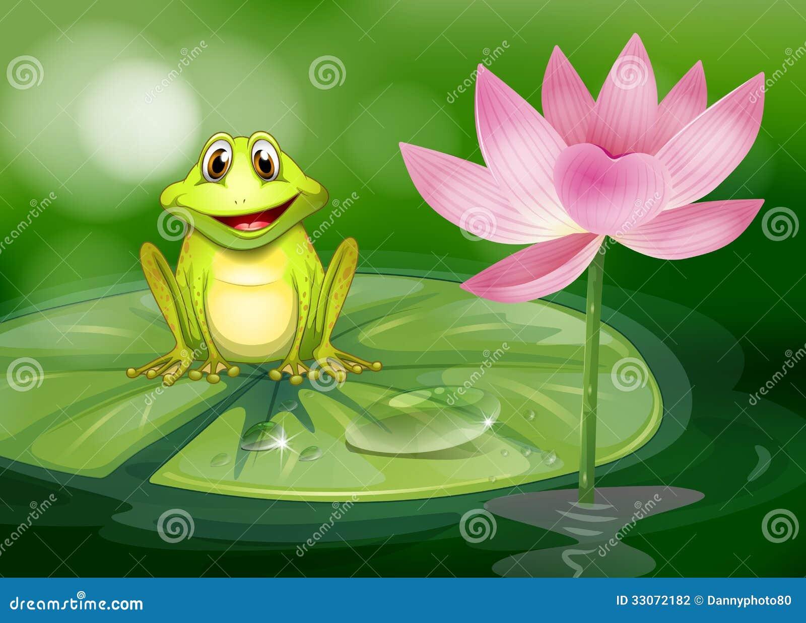 En groda bredvid den rosa blomman på dammet