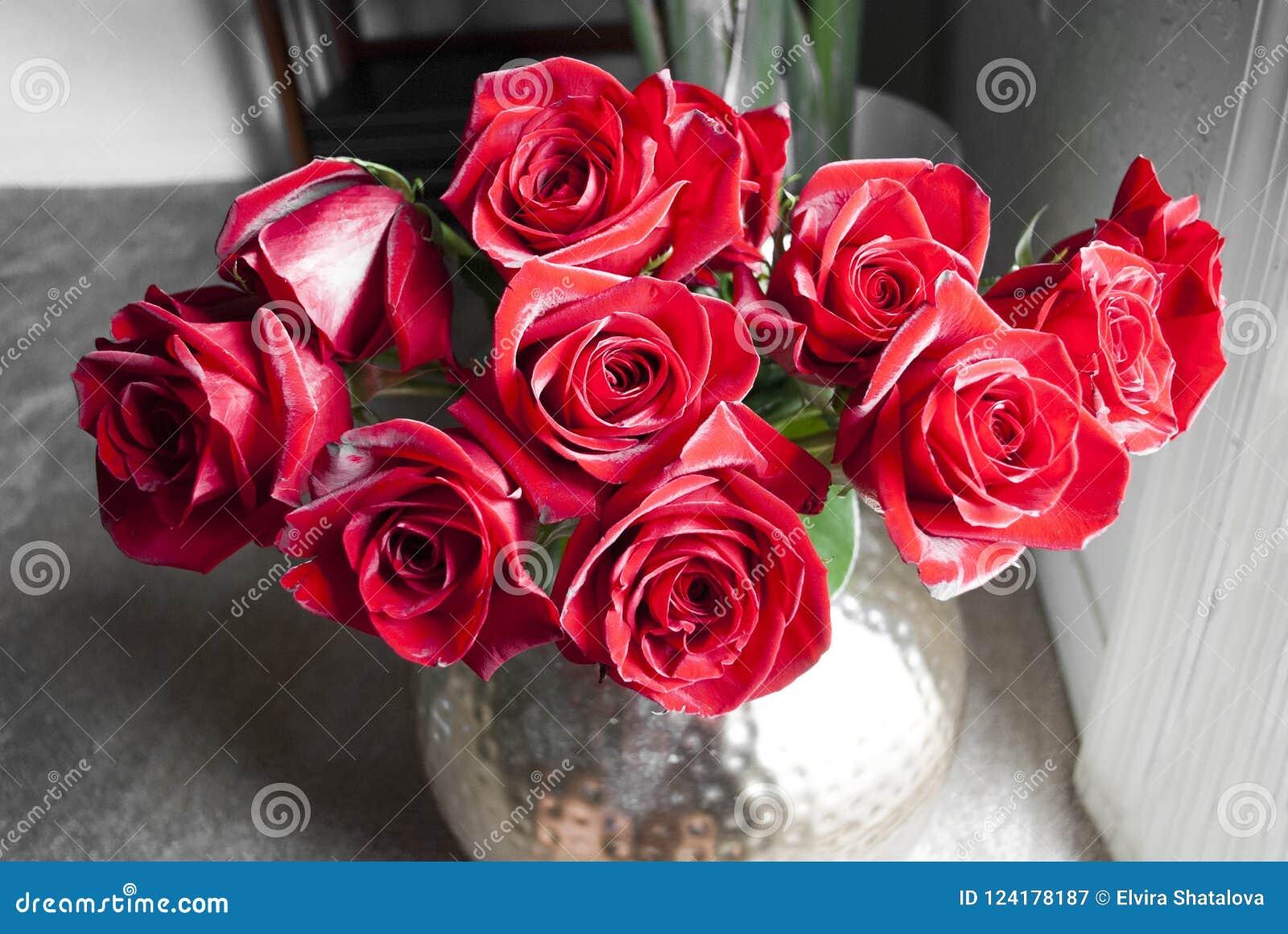 En grupp av mörker - röda rosor med grå bakgrund
