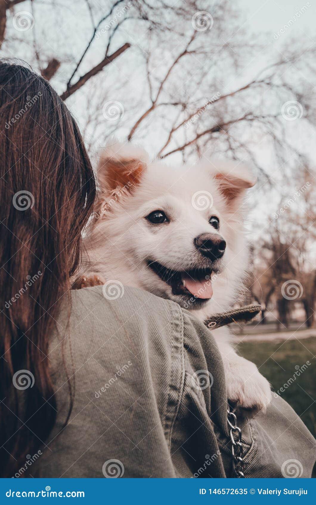 En hund p? skuldran