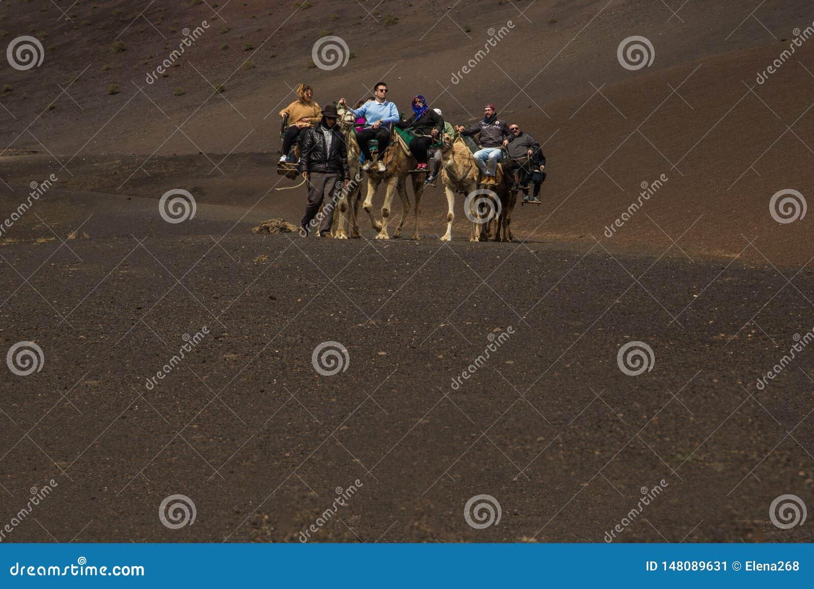 En husvagn av kamel av packar med ryttare
