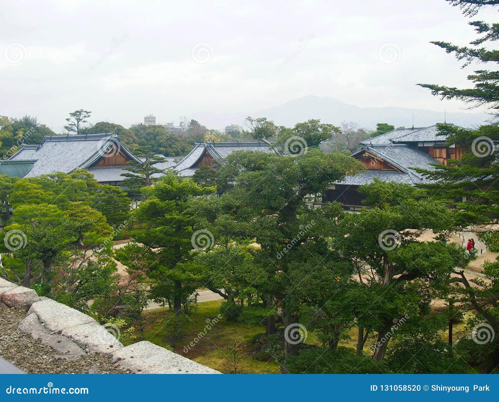 En japansk arboretum, botanisk trädgård med gröna träd