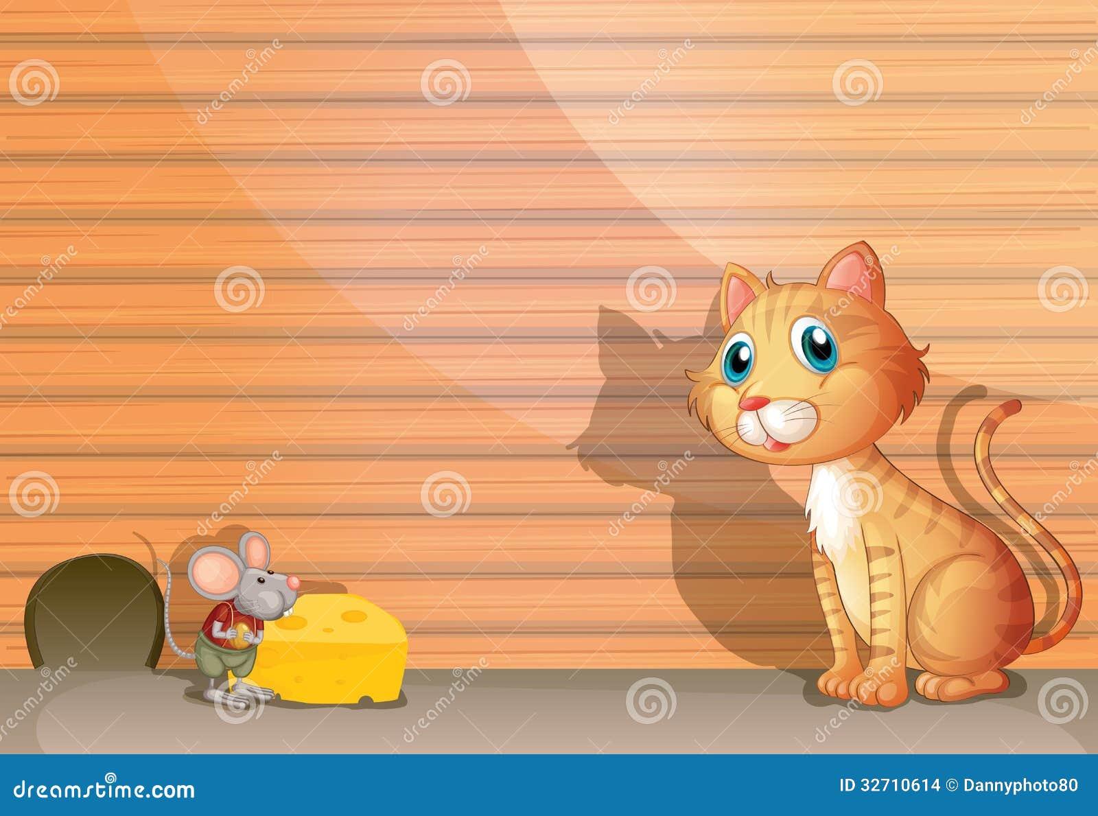 En katt och en tjalla