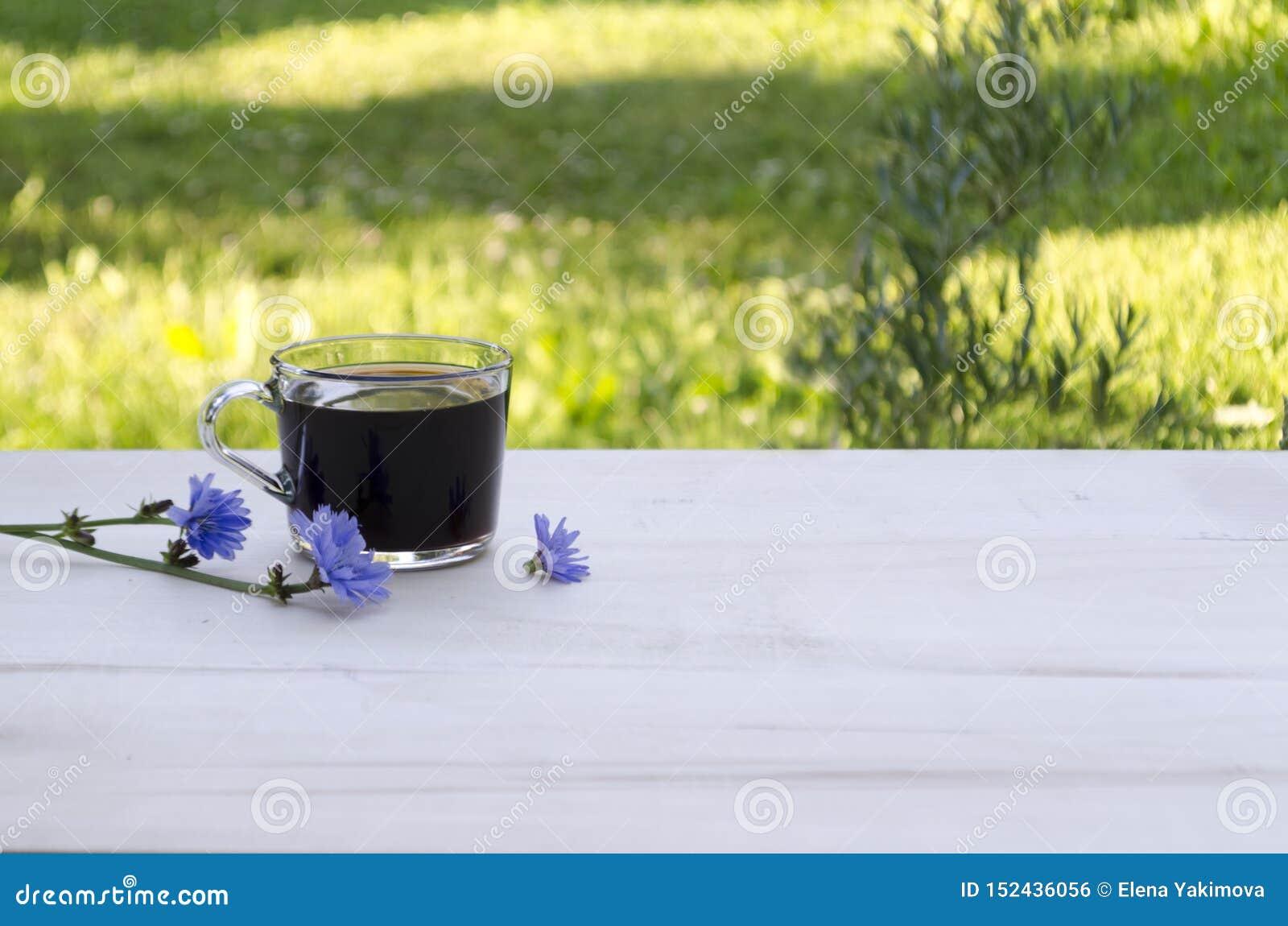 En kopp av cikorien