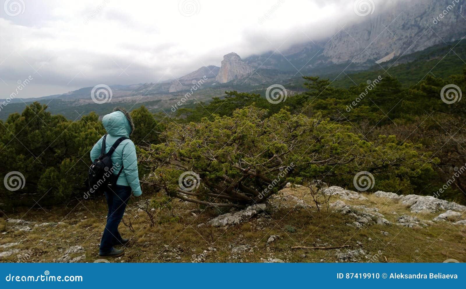 En kvinna med en ryggsäck står på en pittoresk bergstopp och ser in i  avståndet på bergen Molnigt väder Slapp fokus b46db1417b97c