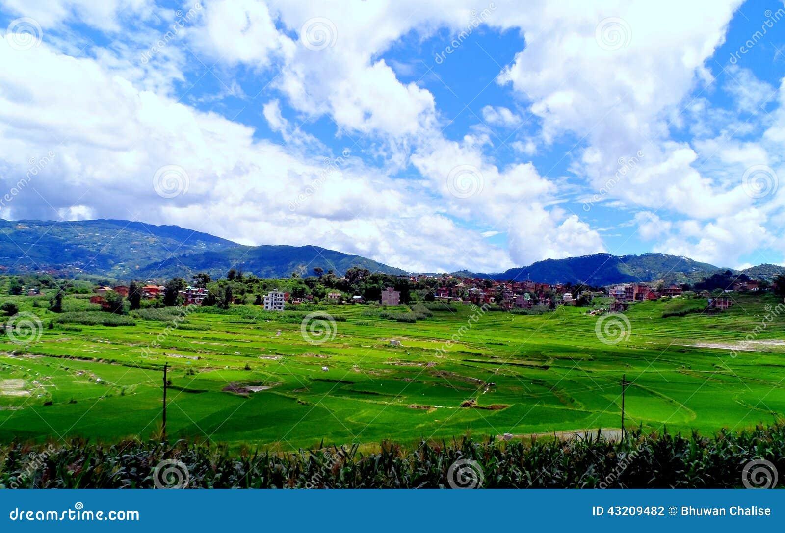 Download En landskapsikt arkivfoto. Bild av liggande, towards - 43209482