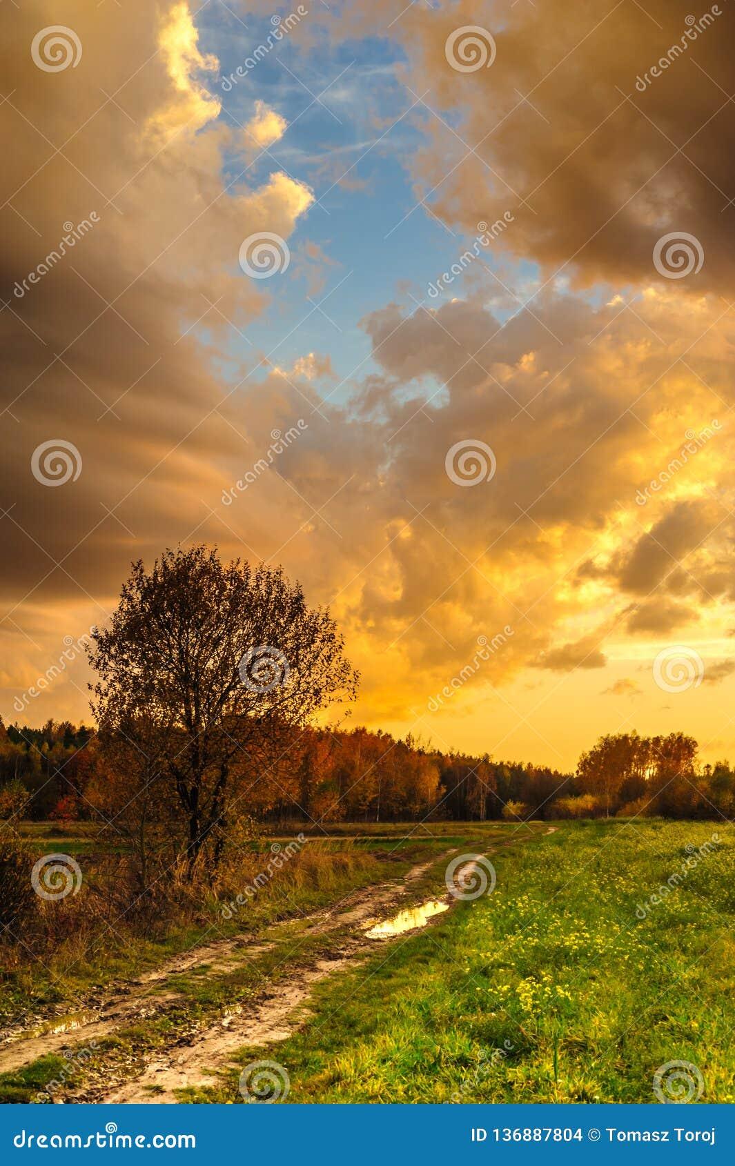 En landsväg under en fenomenal solnedgång