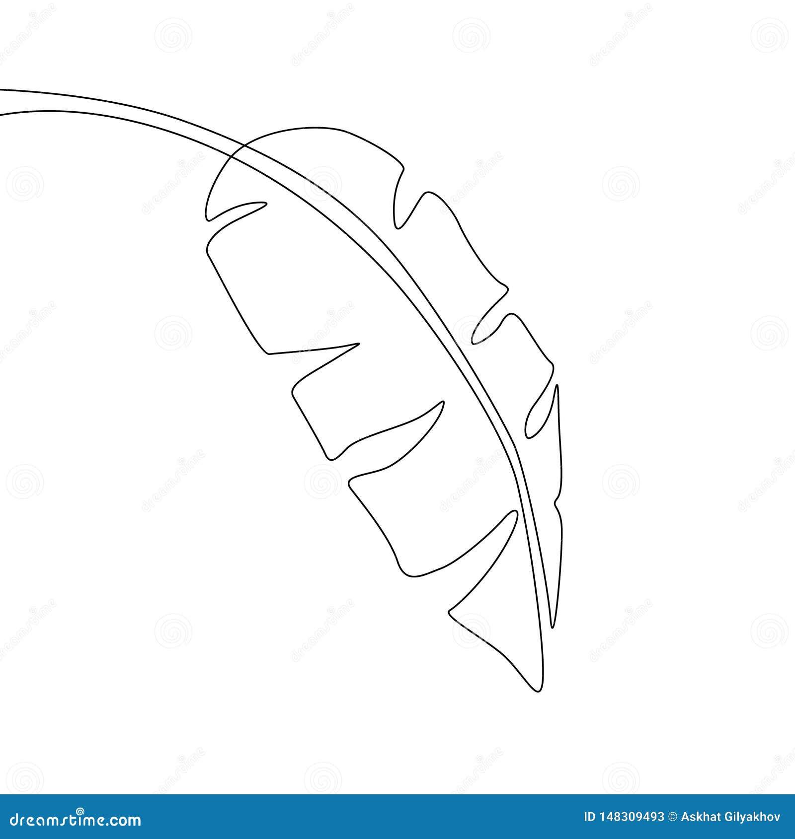 En linje teckningsbananblad Fortl?pande linje exotisk tropisk v?xt