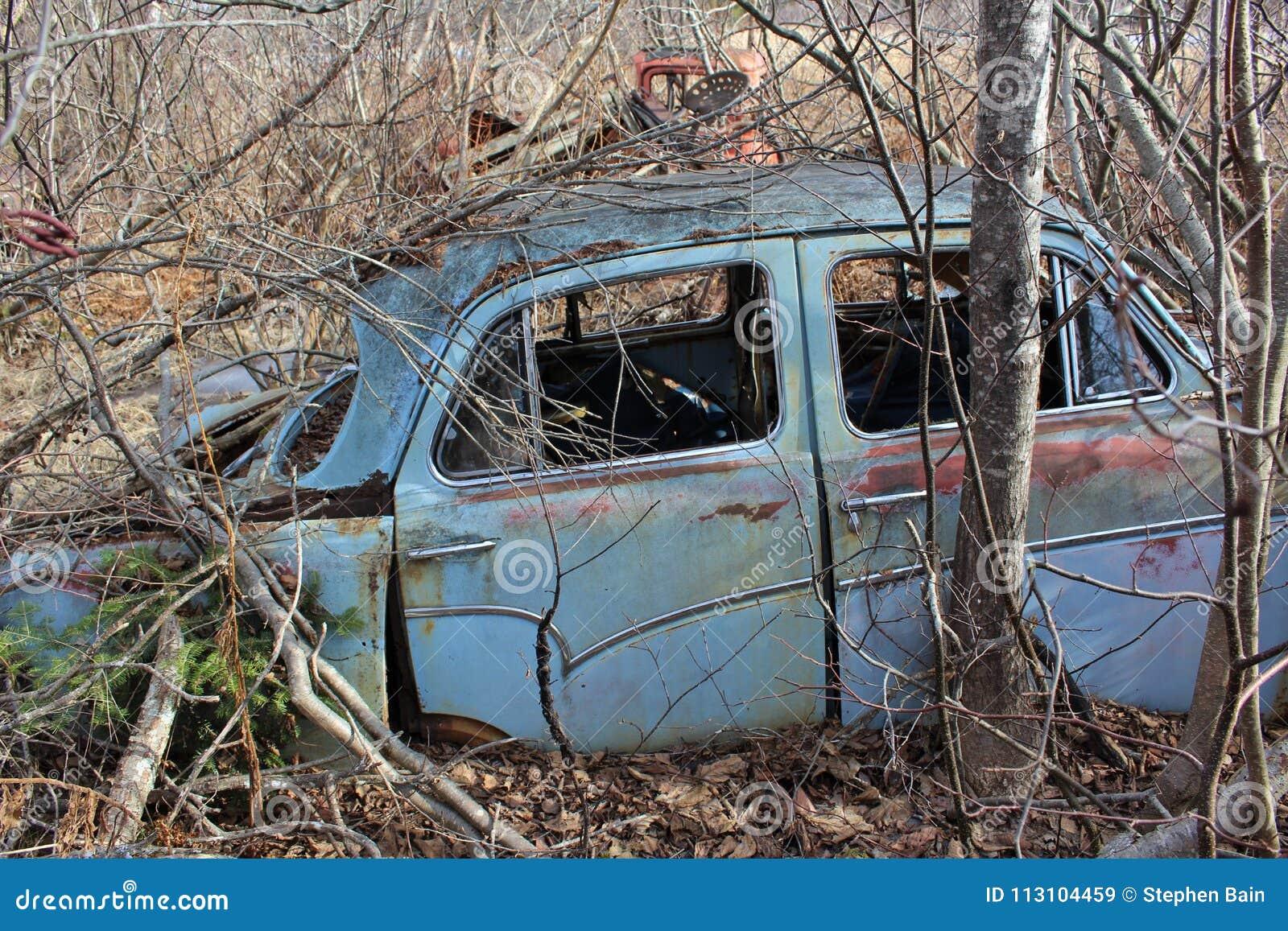 En liten gammal blå bil som överges i skogen under sikten för sida för vintermånader