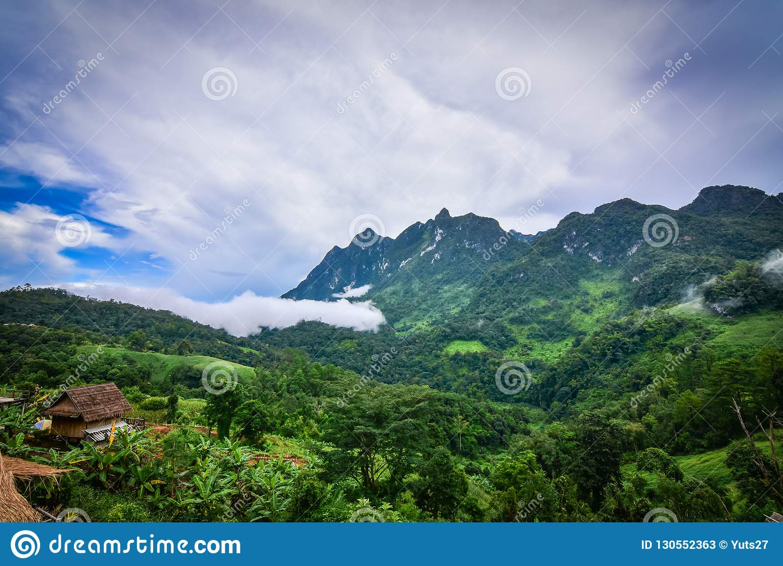 En liten koja i djungeln av Thailand