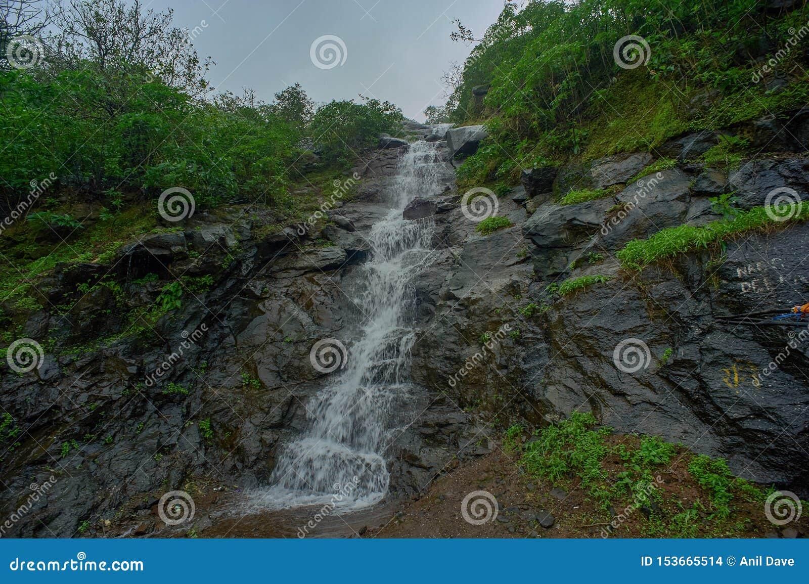 En liten vattenfall i skogarna av de västra ghatsna i Malshej ghat, Maharashtra