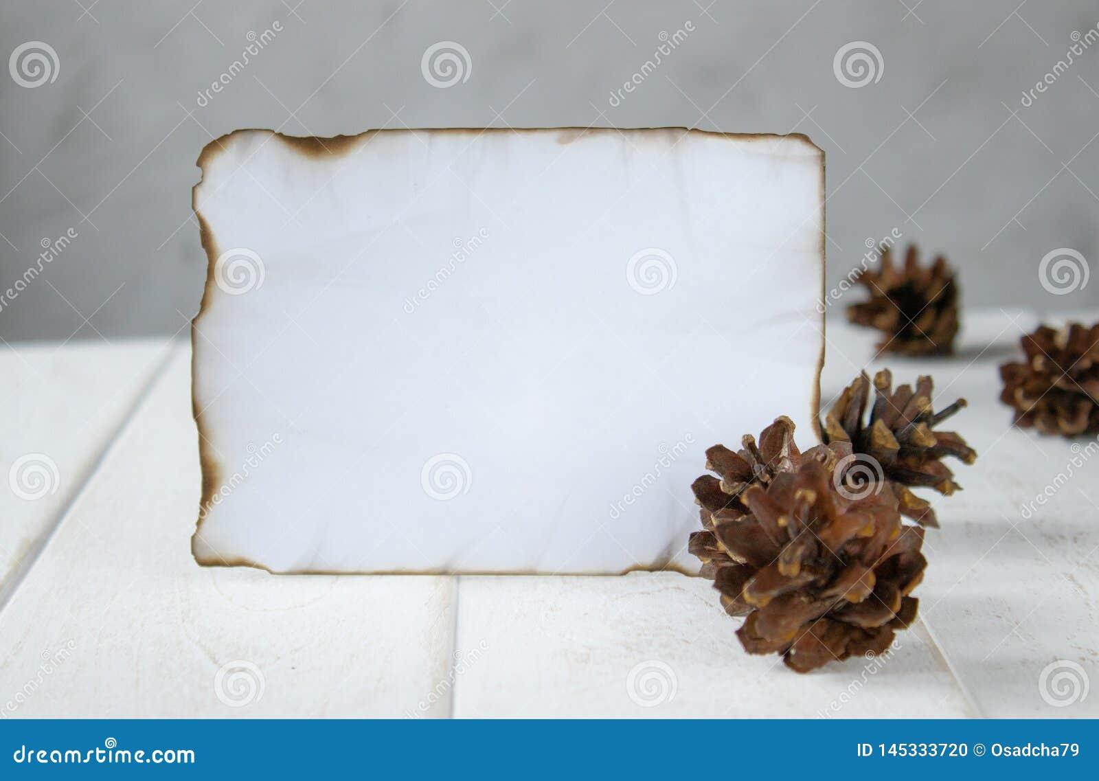 En los tableros de madera blancos, una hoja de papel quemada a lo largo de los bordes, conos del bosque alrededor de los bordes D