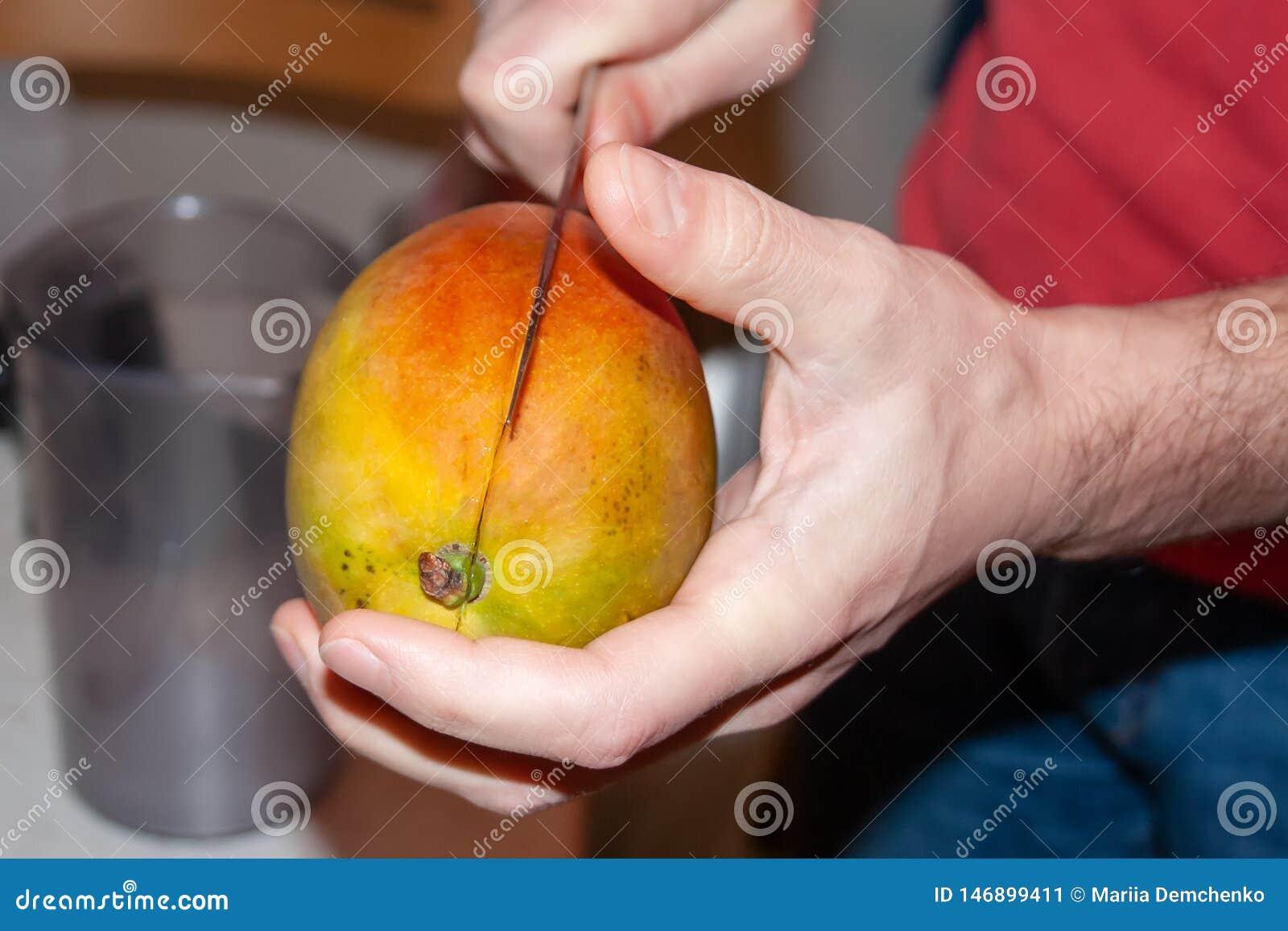 En man klipper en mango med en kniv som rymmer den i hans händer