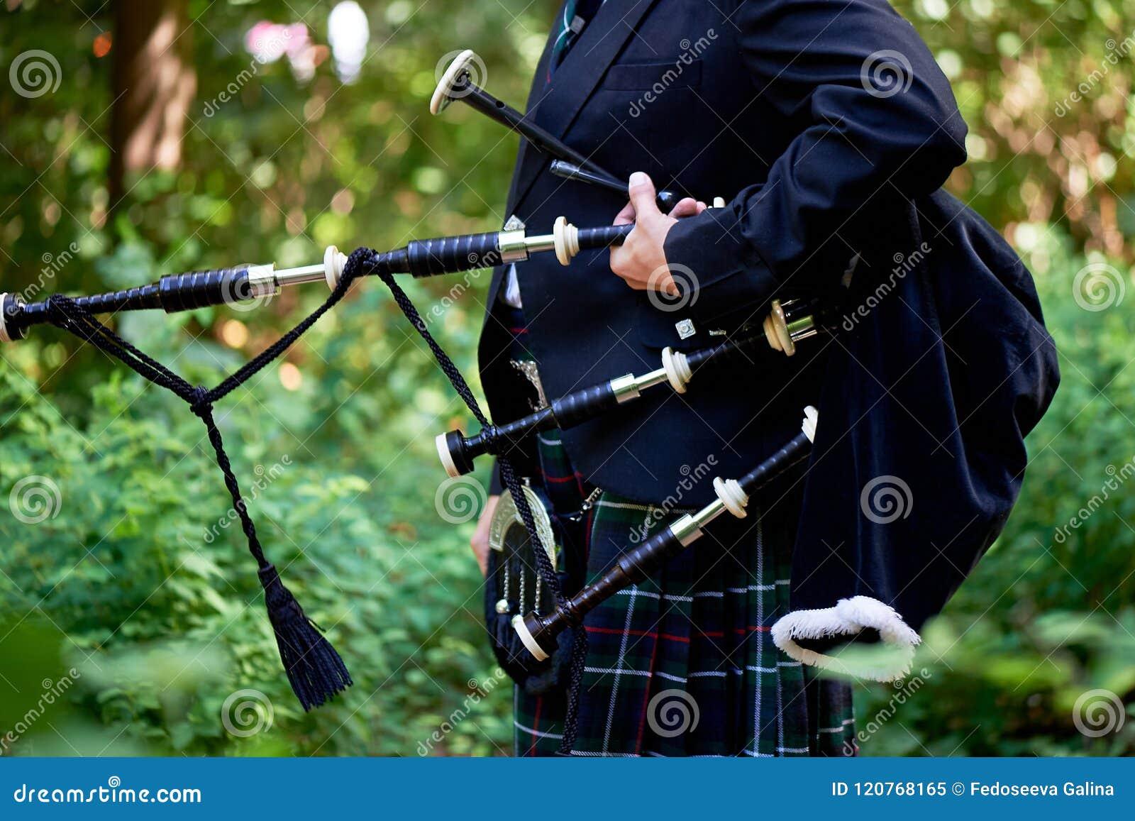 En man med ett säckpipe-, en kilt i en bur med en gräsplan och rött band kultur Detaljerna av kjolen av kilten och