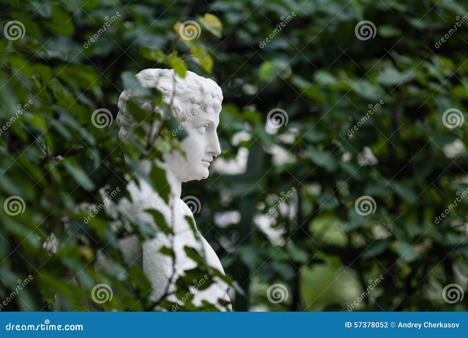 En marmorbyst in bland sidorna