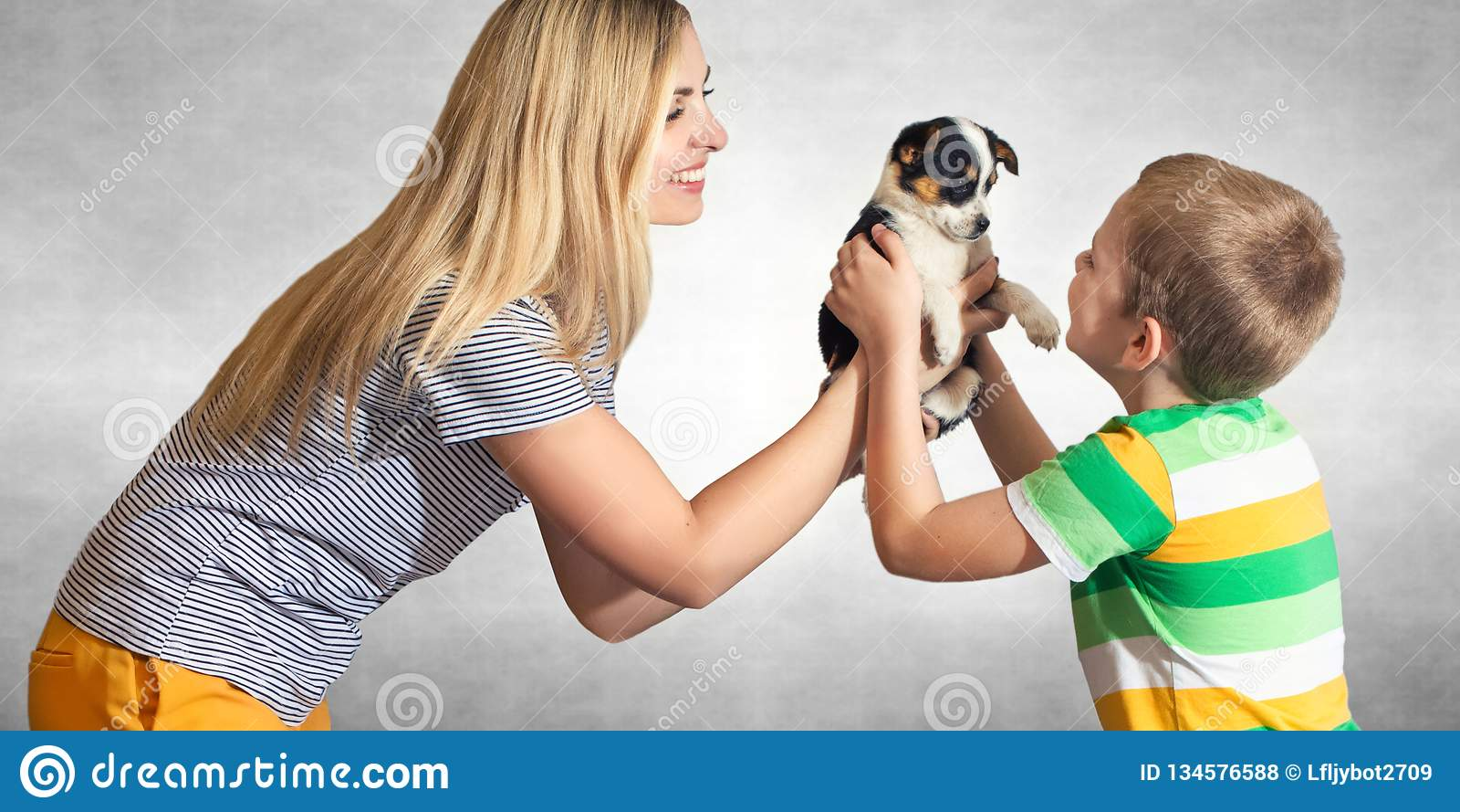 En moder att framlägga hennes son en valp En familj för en hemlös hund Uppfyllelsen av ett barns dröm